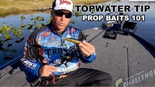 Exclusive Topwater Fishing Tip: How to Fish a Prop Bait - What you need to know