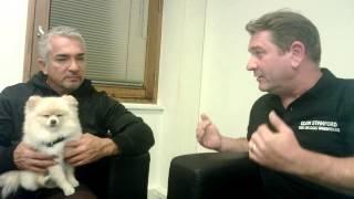 Glen Stanford The Uk Dog Whisperer Meets Cesar Millan