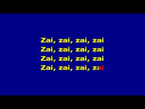 Nelu Stratan - zai zai  karaoke