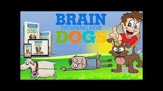 Brain Training for Dogs Review - The best Brain Training For Dogs