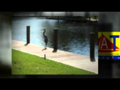 St. James City ~ Florida