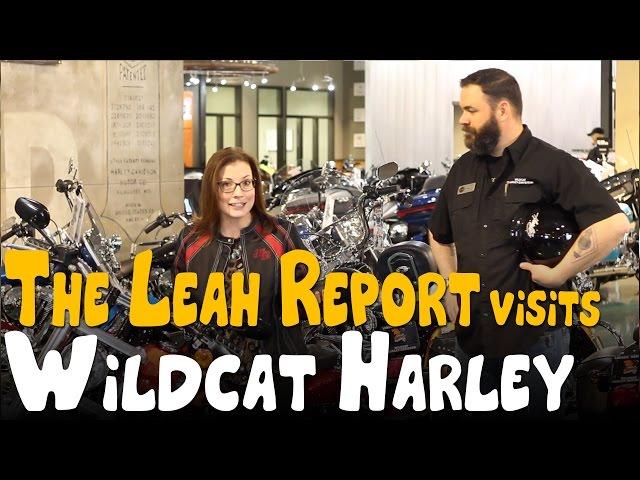 The Leah Report - Wildcat Harley
