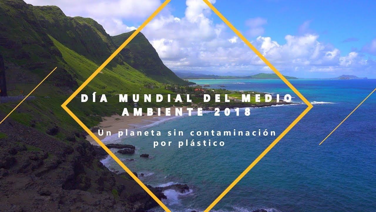 Día Mundial del Medio Ambiente ea091f88ff3