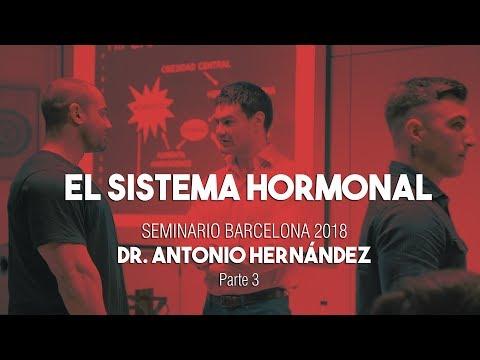 EL SISTEMA HORMONAL | Seminario Dr. Antonio Hernández Barcelona Parte 3