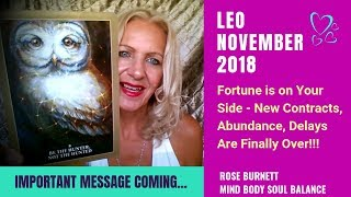 Leo November 2018 - Important Message Coming...