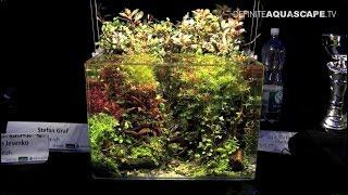 The Art of the Planted Aquarium 2017 - Nano tanks 7-9