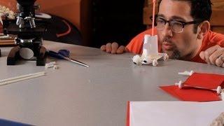 Kağıt ve Şeker | Bilim Projeleri bir Araba Yapmak nasıl