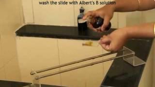 Albert's staining technique