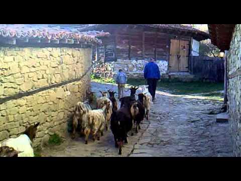 Rural Bulgaria