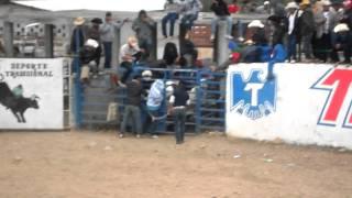 JARIPEO COLONIA MAGDALENO CEDILLO 1 ENERO 2012