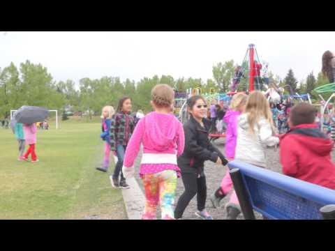 Random Acts of Kindness, Escuela Collingwood School