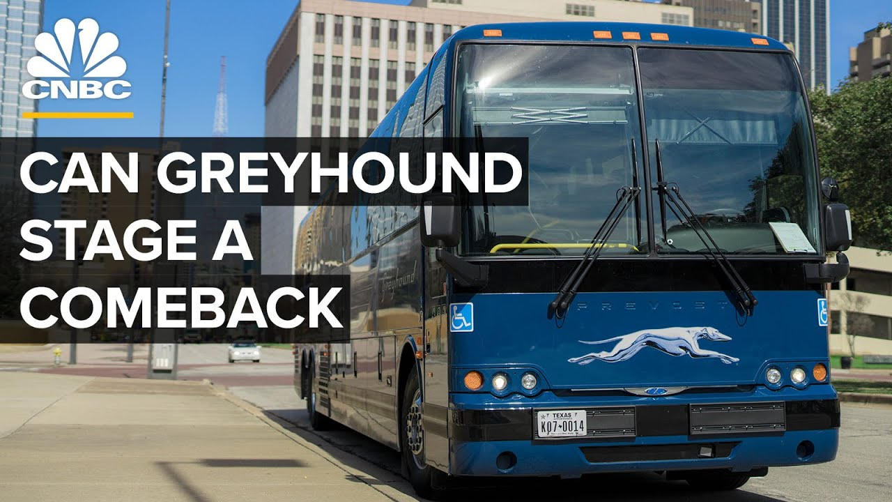 How Greyhound Became The Largest Bus Service In The U.S.