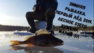 Зимняя рыбалка. Первый лёд 2019. Лесное Озеро Кумъяр, Марий Эл