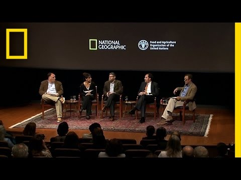 Why Sustainable Food Systems Matter | Future of Food