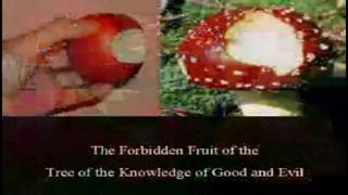 1 8 Occult Esoteric Artwork Adam & Eve Forbidden fruit & the Holy Grail 2004 Excerpts