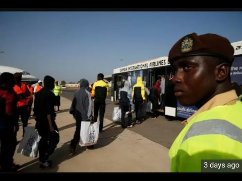 Homecoming Of 169 Gambians From Libya
