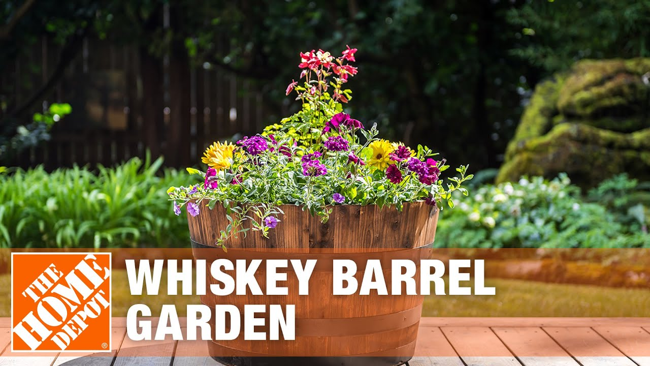 Whiskey Barrel Planter Ideas The Home Depot Youtube