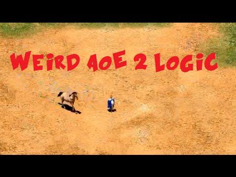 Top 20 Weird Logic Moments in AoE 2