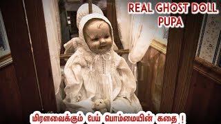 இந்த பொம்மை உங்கள் வீட்டிற்கு வராம பாத்துகோங்க !  Pupa Doll | Real Ghost Story
