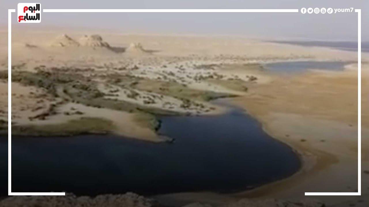 شوف جمال مصر.. بث مباشر من بانوراما وادي الريان الطبيعية بالفيوم  - 17:55-2021 / 9 / 16