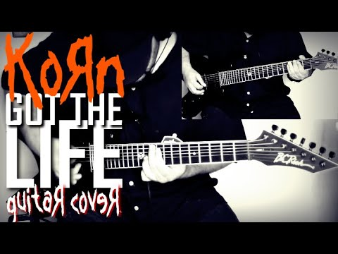 KoRn - Got the life (Guitar Cover)