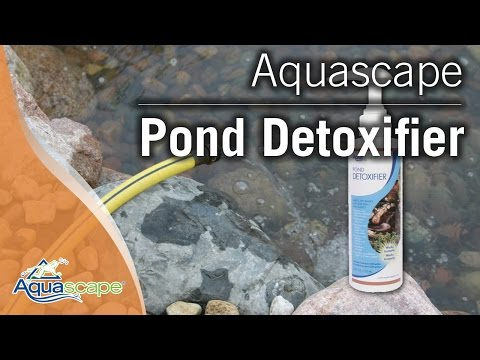 Turning Tap Water into Pond Water with Aquascape's Pond Detoxifier