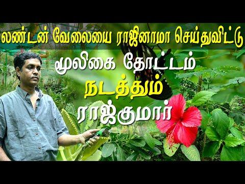Agriculture and organic farming Chennai herbal plants garden Tamil