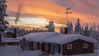 Winter 2013. ЗИМА. Мир животных зимой