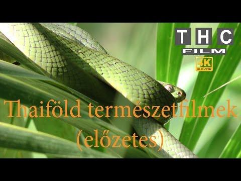Thaiföld, természetfilmek  bemutató 4K Ultra HD (THC film) letöltés