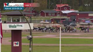 Vidéo de la course PMU PRIX MAIDENLOPP