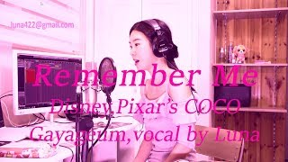 Remember Me-Disney, Pixar's COCO Gayageum(가야금),vocal by Luna(루나)