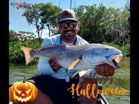 Kayak Fishing Tampa Bay