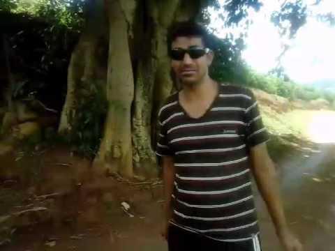 Reportagem Árvore Gameleira