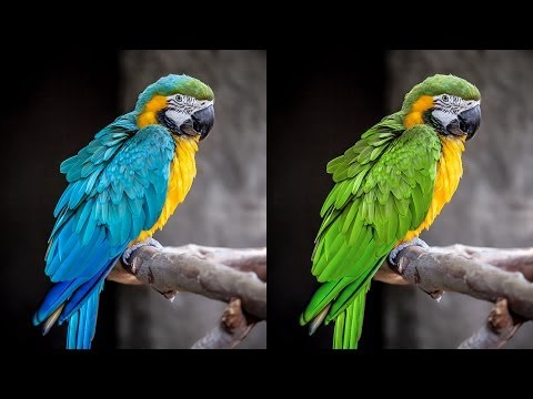How To Adjust Specific Colors With Hue & Saturation Adjustment Layers In Photoshop