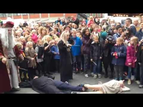 Harry Potter Festival 2014 i Odense - Det store slag