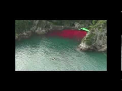 STOP The Dolphin Slaughter, Mecury Poisoning and Government Corruption - Taiji Japan