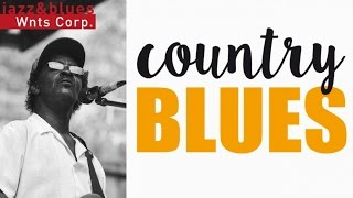 country blues   acoustic delta folk blues