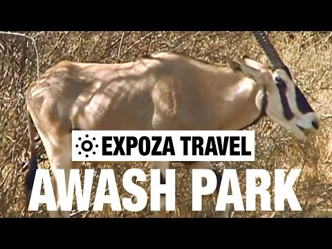 Awash Park (Ethiopia) Vacation Travel Video Guide
