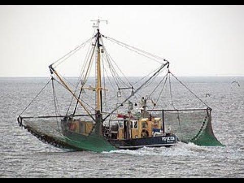 Fishing in the Maritimes