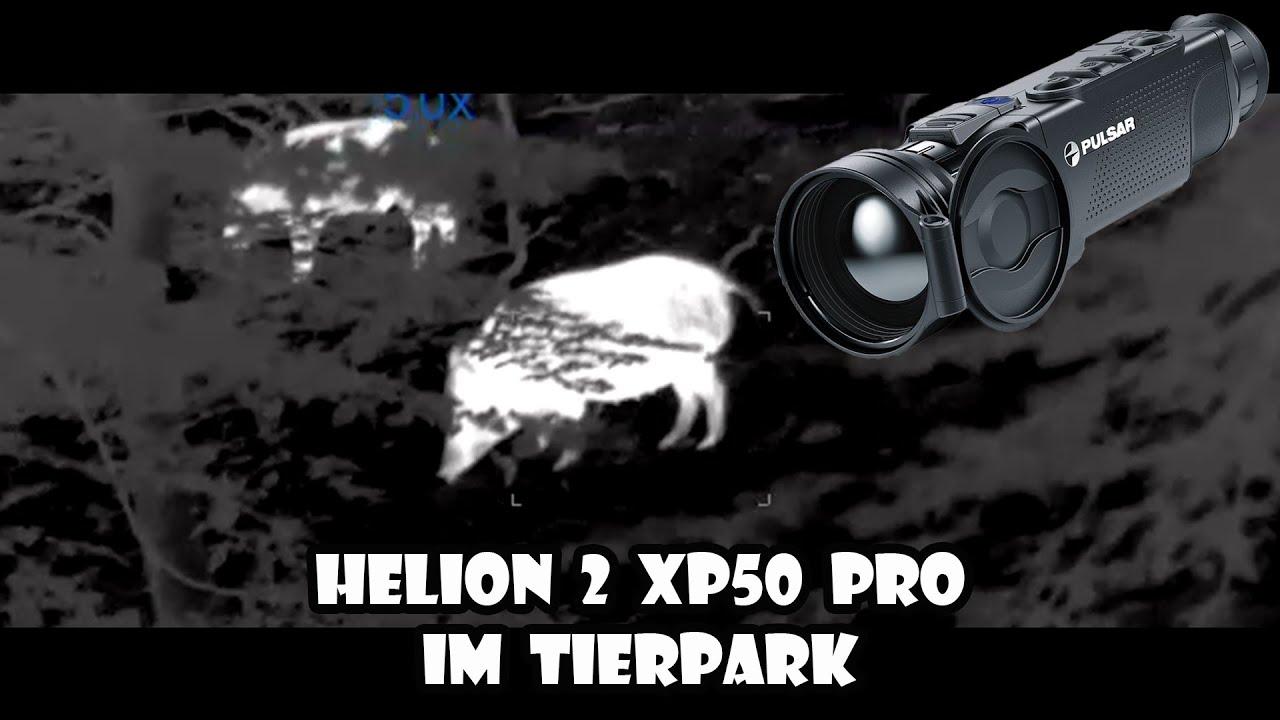 Download Pulsar Helion 2 XP 50 PRO - ein Besuch im Wildpark