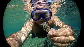 видео Лучшие пляжи острова Кос
