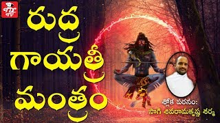 Shiva Rudra Gayatri Mantra   Shiva Chants   Hindu Devotional Chants   Sanskrit Language Mantras