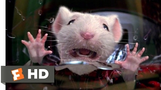 Stuart Little  1999  - Stuck In The Washing Machine Scene  2/10  | Movieclips