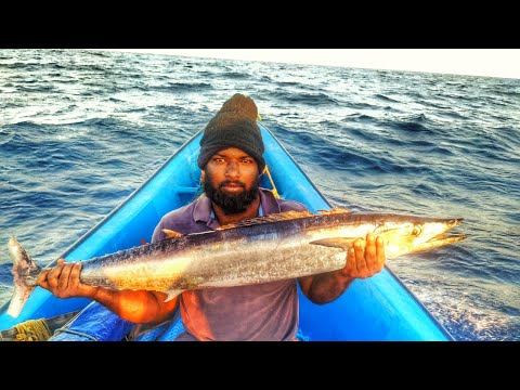 FAST TROLLING FISHING METHOD //CATCHING  WAHOO AND TUNA FISH