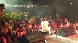 coco tea at the montreal international reggae fest