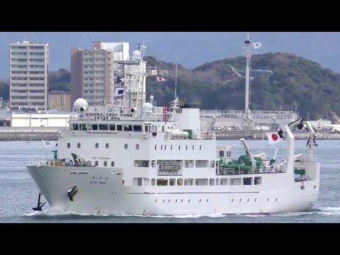 耕洋丸 - 水産大学校 練習船 / KOYO MARU - National Fisheries University training ship - January 2017
