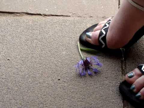 High Heels Crush Flower Blume