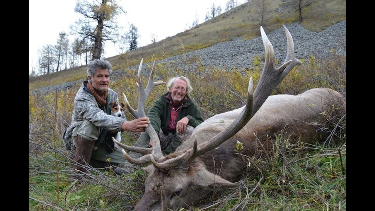 Altay Maral Hunting Chasse In Kazakhstan 2013 Season By