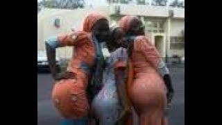 Chakwala dadi 3
