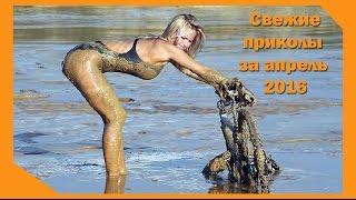 Самые смешные приколы за апрель 2016. ПРИКОЛЫ!!!